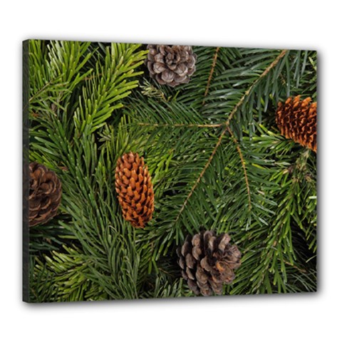 Branch Christmas Cone Evergreen Canvas 24  X 20
