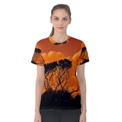 Trees Branches Sunset Sky Clouds Women s Cotton Tee