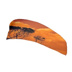 Trees Branches Sunset Sky Clouds Stretchable Headband