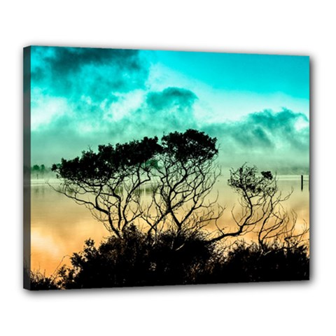 Trees Branches Branch Nature Canvas 20  X 16