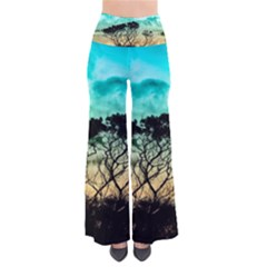 Trees Branches Branch Nature Pants