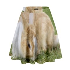 Beautiful Blue Eyed Bunny On Green Grass High Waist Skirt