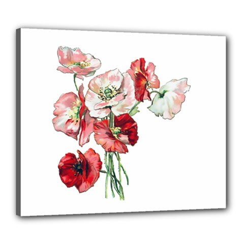 Flowers Poppies Poppy Vintage Canvas 24  X 20