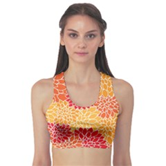 Abstract Art Background Colorful Sports Bra