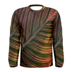 Leaf Colorful Nature Orange Season Men s Long Sleeve Tee