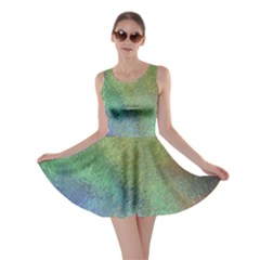 Frosted Glass Background Psychedelic Skater Dress