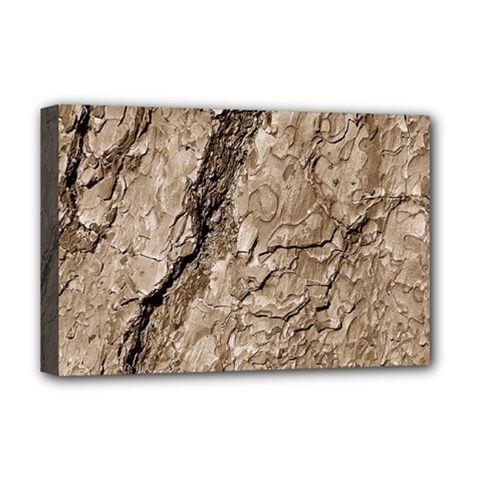 Tree Bark B Deluxe Canvas 18  X 12