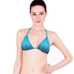 Winter Land Blue Bikini Top