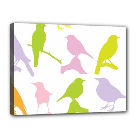 Birds Colourful Background Canvas 16  X 12