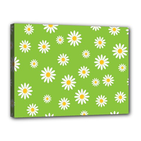 Daisy Flowers Floral Wallpaper Canvas 16  X 12