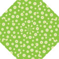 Daisy Flowers Floral Wallpaper Hook Handle Umbrellas (medium)
