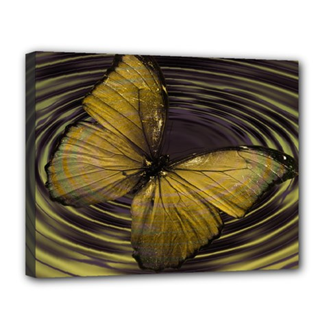 Butterfly Insect Wave Concentric Canvas 14  X 11