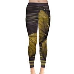 Butterfly Insect Wave Concentric Leggings