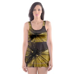Butterfly Insect Wave Concentric Skater Dress Swimsuit