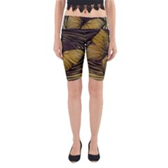 Butterfly Insect Wave Concentric Yoga Cropped Leggings