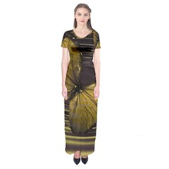 Butterfly Insect Wave Concentric Short Sleeve Maxi Dress