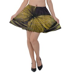 Butterfly Insect Wave Concentric Velvet Skater Skirt