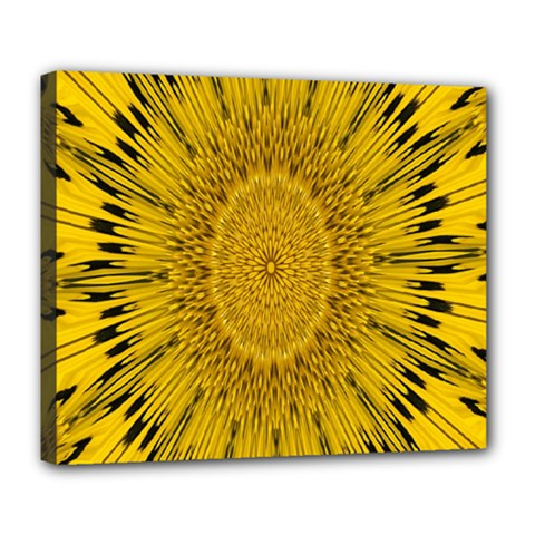 Pattern Petals Pipes Plants Deluxe Canvas 24  X 20