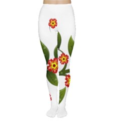Flower Branch Nature Leaves Plant Women s Tights