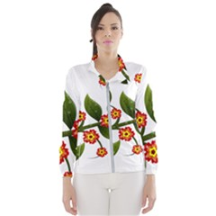 Flower Branch Nature Leaves Plant Wind Breaker (women)