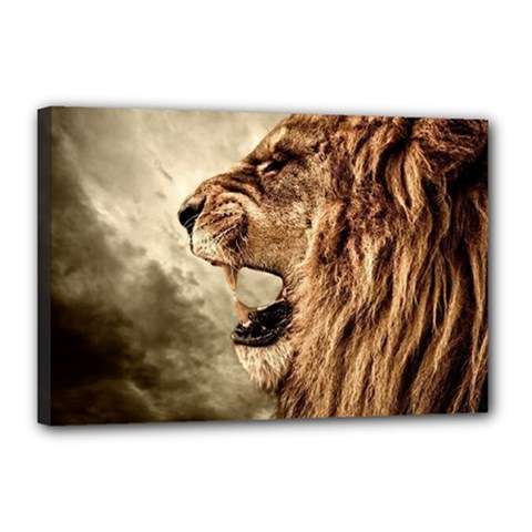 Roaring Lion Canvas 18  X 12