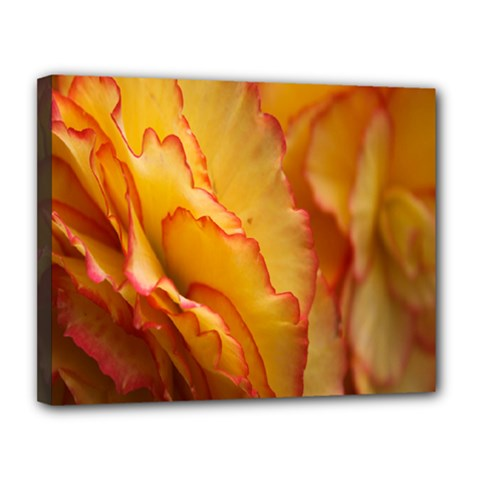 Flowers Leaves Leaf Floral Summer Canvas 14  X 11