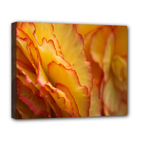 Flowers Leaves Leaf Floral Summer Deluxe Canvas 20  X 16