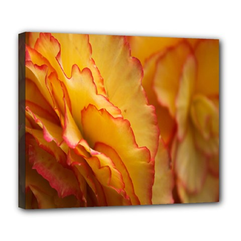 Flowers Leaves Leaf Floral Summer Deluxe Canvas 24  X 20