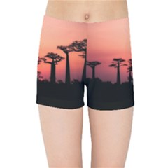 Baobabs Trees Silhouette Landscape Kids Sports Shorts