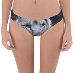Africa Lion Male Closeup Macro Reversible Hipster Bikini Bottoms