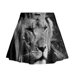 Africa Lion Male Closeup Macro Mini Flare Skirt