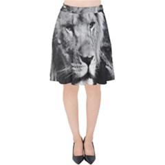 Africa Lion Male Closeup Macro Velvet High Waist Skirt