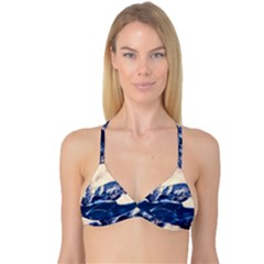 Antarctica Mountains Sunrise Snow Reversible Tri Bikini Top