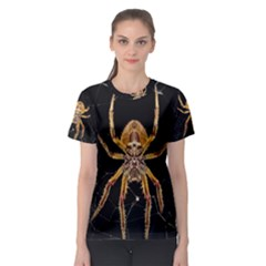Insect Macro Spider Colombia Women s Sport Mesh Tee