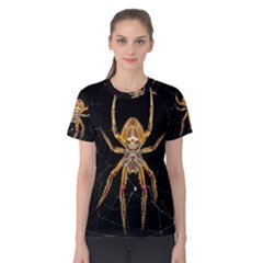 Insect Macro Spider Colombia Women s Cotton Tee