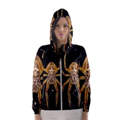 Insect Macro Spider Colombia Hooded Wind Breaker (women)