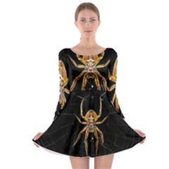 Insect Macro Spider Colombia Long Sleeve Skater Dress