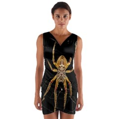 Insect Macro Spider Colombia Wrap Front Bodycon Dress