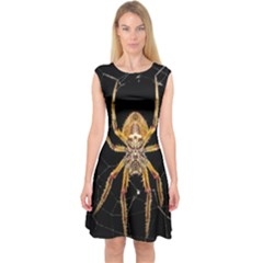 Insect Macro Spider Colombia Capsleeve Midi Dress