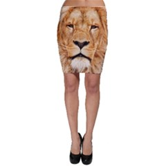 Africa African Animal Cat Close Up Bodycon Skirt