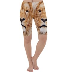 Africa African Animal Cat Close Up Cropped Leggings
