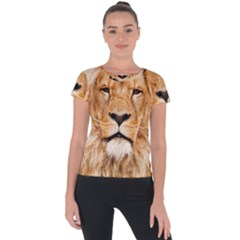 Africa African Animal Cat Close Up Short Sleeve Sports Top