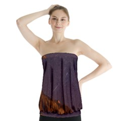 Italy Cabin Stars Milky Way Night Strapless Top
