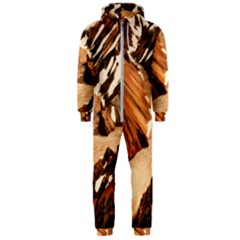 Iceland Mountains Snow Ravine Hooded Jumpsuit (men)