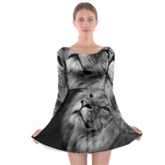 Feline Lion Tawny African Zoo Long Sleeve Skater Dress