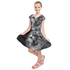 Feline Lion Tawny African Zoo Kids  Short Sleeve Dress