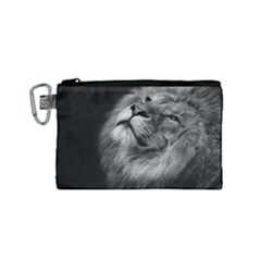 Feline Lion Tawny African Zoo Canvas Cosmetic Bag (small)