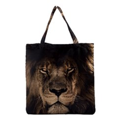 African Lion Mane Close Eyes Grocery Tote Bag