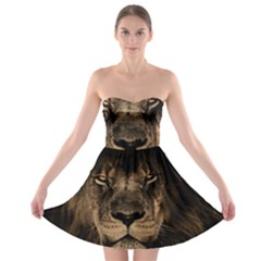 African Lion Mane Close Eyes Strapless Bra Top Dress