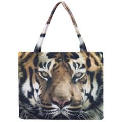 Tiger Bengal Stripes Eyes Close Mini Tote Bag